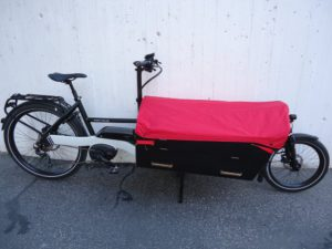 Riese & Müller Packster, touring 80, Light grey, Testrad