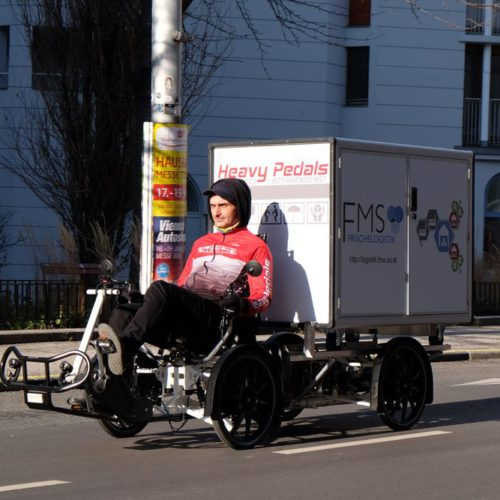 Velove Armadillo Lastenrad (Foto: Peter Seipel)