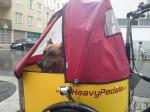Ein Hund wird mit dem Nihola Dreirad zum Tierarzt gebracht